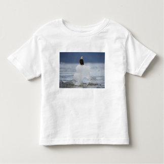 USA, Alaska, Holkham Bay, Bald Eagle Tee Shirt