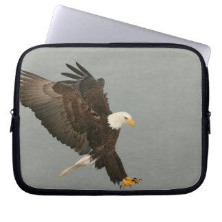 USA, Alaska, Homer. Bald eagle in landing Laptop Sleeve