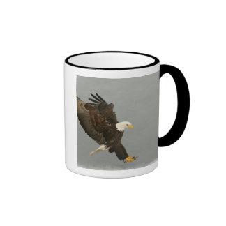 USA, Alaska, Homer. Bald eagle in landing Ringer Mug