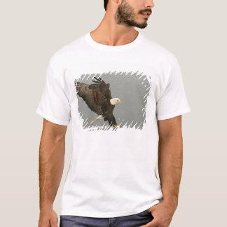 USA, Alaska, Homer. Bald eagle in landing T-Shirt