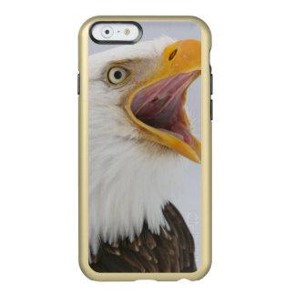 USA, Alaska, Homer. Bald eagle screaming. Credit Incipio Feather Shine iPhone 6 Case