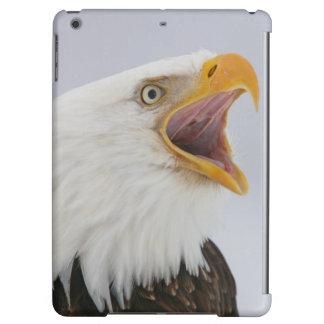 USA, Alaska, Homer. Bald eagle screaming. Credit iPad Air Case