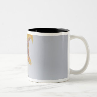 USA, Alaska, Homer. Bald eagle screaming. Credit Two-Tone Coffee Mug