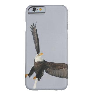 USA, Alaska, Homer. Bald eagle upside down start Barely There iPhone 6 Case