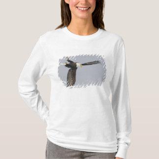 USA, Alaska, Homer. Bald eagle upside down start T-Shirt