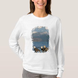 USA, Alaska, Homer, Bald Eagles Haliaeetus T-Shirt