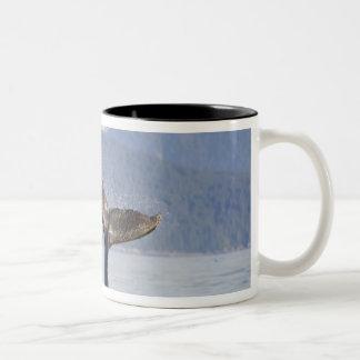 USA, Alaska, Icy Strait. Humpback Whale calf Two-Tone Coffee Mug