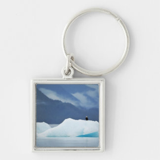 USA, Alaska, Inside Passage. Bald eagle perched Keychain