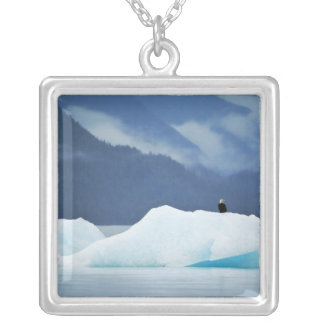 USA, Alaska, Inside Passage. Bald eagle perched Silver Plated Necklace