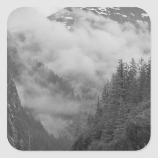 USA, Alaska, Juneau, Rainforest covers fjords in Square Sticker