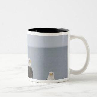 USA, Alaska, Kachemak Bay, Homer Spit. Bald Two-Tone Coffee Mug