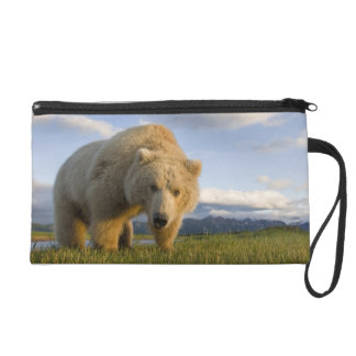 USA, Alaska, Katmai National Park, Brown Bear 3 Wristlet Purse