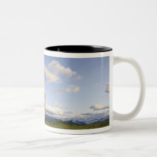 USA, Alaska, Katmai National Park, Brown Bear 3 Two-Tone Coffee Mug