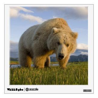 USA, Alaska, Katmai National Park, Brown Bear 3 Wall Decal