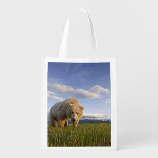 USA, Alaska, Katmai National Park, Brown Bear 3 Market Totes