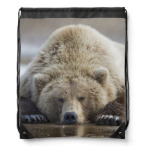 USA, Alaska, Katmai National Park, Brown Bear 4 Drawstring Bag