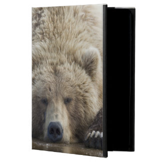 USA, Alaska, Katmai National Park, Brown Bear 4 iPad Air Covers