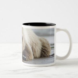 USA, Alaska, Katmai National Park, Brown Bear 4 Two-Tone Coffee Mug