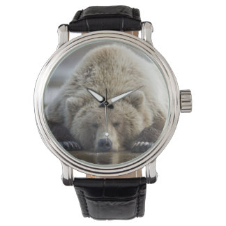 USA, Alaska, Katmai National Park, Brown Bear 4 Wrist Watch