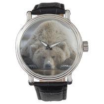 USA, Alaska, Katmai National Park, Brown Bear 4 Wristwatch