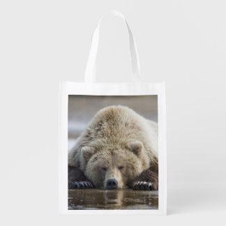 USA, Alaska, Katmai National Park, Brown Bear 4 Market Totes