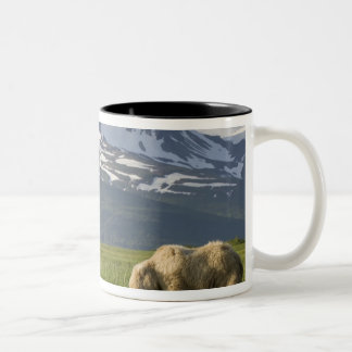 USA, Alaska, Katmai National Park, Brown Bear 5 Two-Tone Coffee Mug