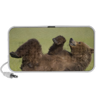 USA, Alaska, Katmai National Park, Brown Bear 6 iPhone Speakers