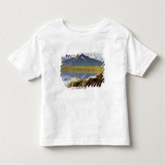 USA, Alaska, Katmai National Park, Brown Bears 2 Toddler T-shirt