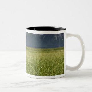 USA, Alaska, Katmai National Park, Brown Bears Two-Tone Coffee Mug