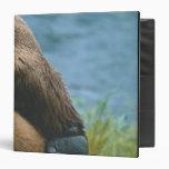USA, Alaska, Katmai National Park, Detail of Vinyl Binder