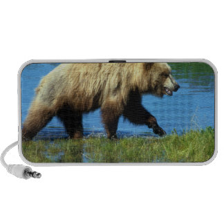 USA, Alaska, Katmai National Park, Grizzly 2 iPod Speakers