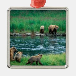 USA, Alaska, Katmai National Park, Grizzly 4 Christmas Tree Ornament