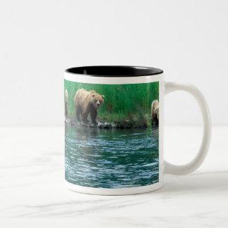 USA, Alaska, Katmai National Park, Grizzly 4 Two-Tone Coffee Mug