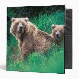 USA, Alaska, Katmai National Park, Grizzly 5 Binder