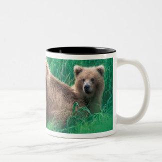USA, Alaska, Katmai National Park, Grizzly 5 Two-Tone Coffee Mug