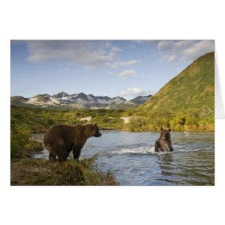 USA, Alaska, Katmai National Park, Kinak Bay, 2 Greeting Card
