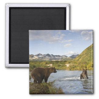 USA, Alaska, Katmai National Park, Kinak Bay, 2 Magnets