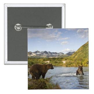USA, Alaska, Katmai National Park, Kinak Bay, 2 Pinback Button