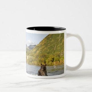 USA, Alaska, Katmai National Park, Kinak Bay, 2 Two-Tone Coffee Mug