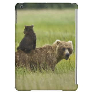 USA, Alaska, Lake Clark National Park. A iPad Air Covers
