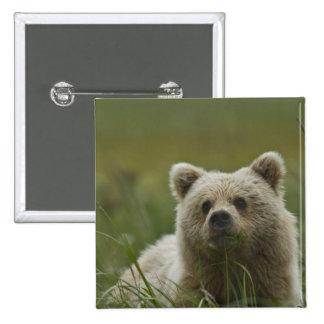 USA, Alaska, Lake Clark National Park. A Pinback Button