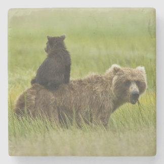 USA, Alaska, Lake Clark National Park. A Stone Coaster