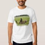 USA, Alaska, Lake Clark National Park. A Tee Shirts