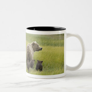 USA, Alaska, Lake Clark National Park. Grizzly Two-Tone Coffee Mug