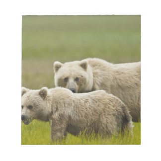 USA, Alaska, Lake Clark National Park. Mom and Notepad