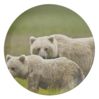 USA, Alaska, Lake Clark National Park. Mom and Party Plates