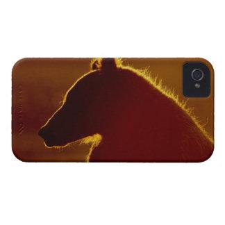 USA, Alaska, Lake Clark National Park, Silver iPhone 4 Case-Mate Case