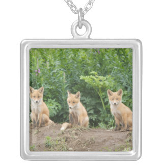 USA, Alaska, McNeil River. Red Fox. Silver Plated Necklace