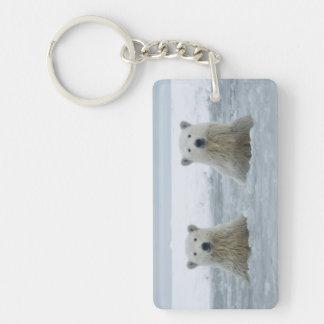 USA, Alaska, North Slope, 1002 Area 2 Double-Sided Rectangular Acrylic Keychain