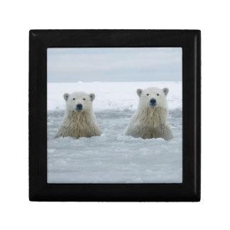 USA, Alaska, North Slope, 1002 Area 2 Gift Box